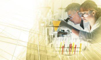 Health Care Life Sciences Branche